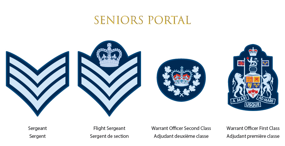 Seniors Portal